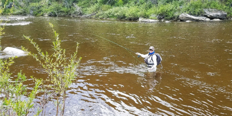 Finding Renewal in a FlyLine